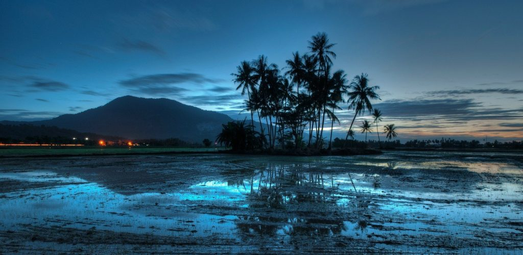 618120-blue-clouds-evening-landscapes-lights-malaysia-nature-palm-trees-sky-sunset-water