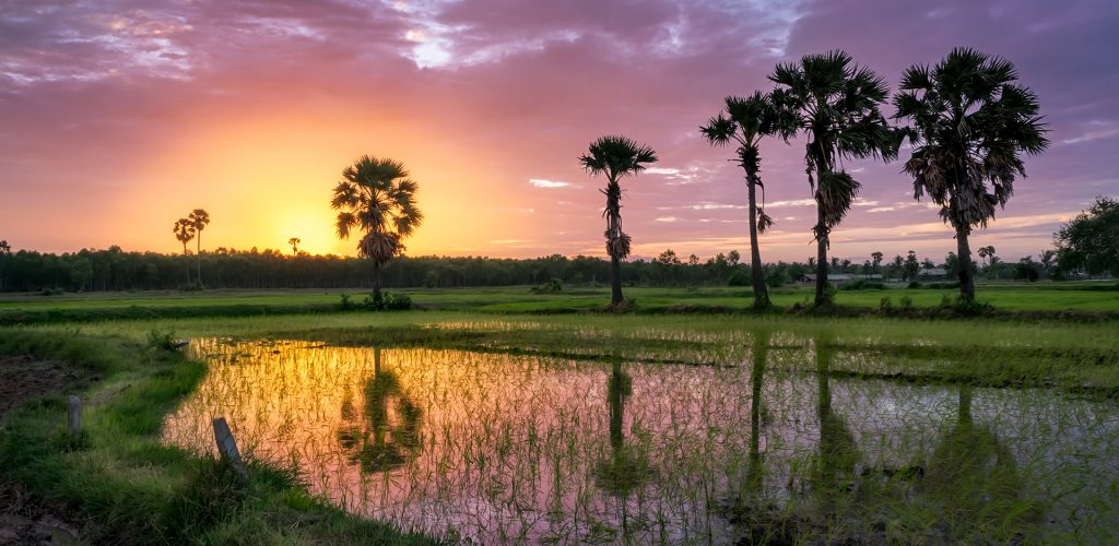 beautiful-sunset-cambodia